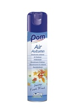 DEODORANTE AMBIENTE AIR  AUTUMN 300ML